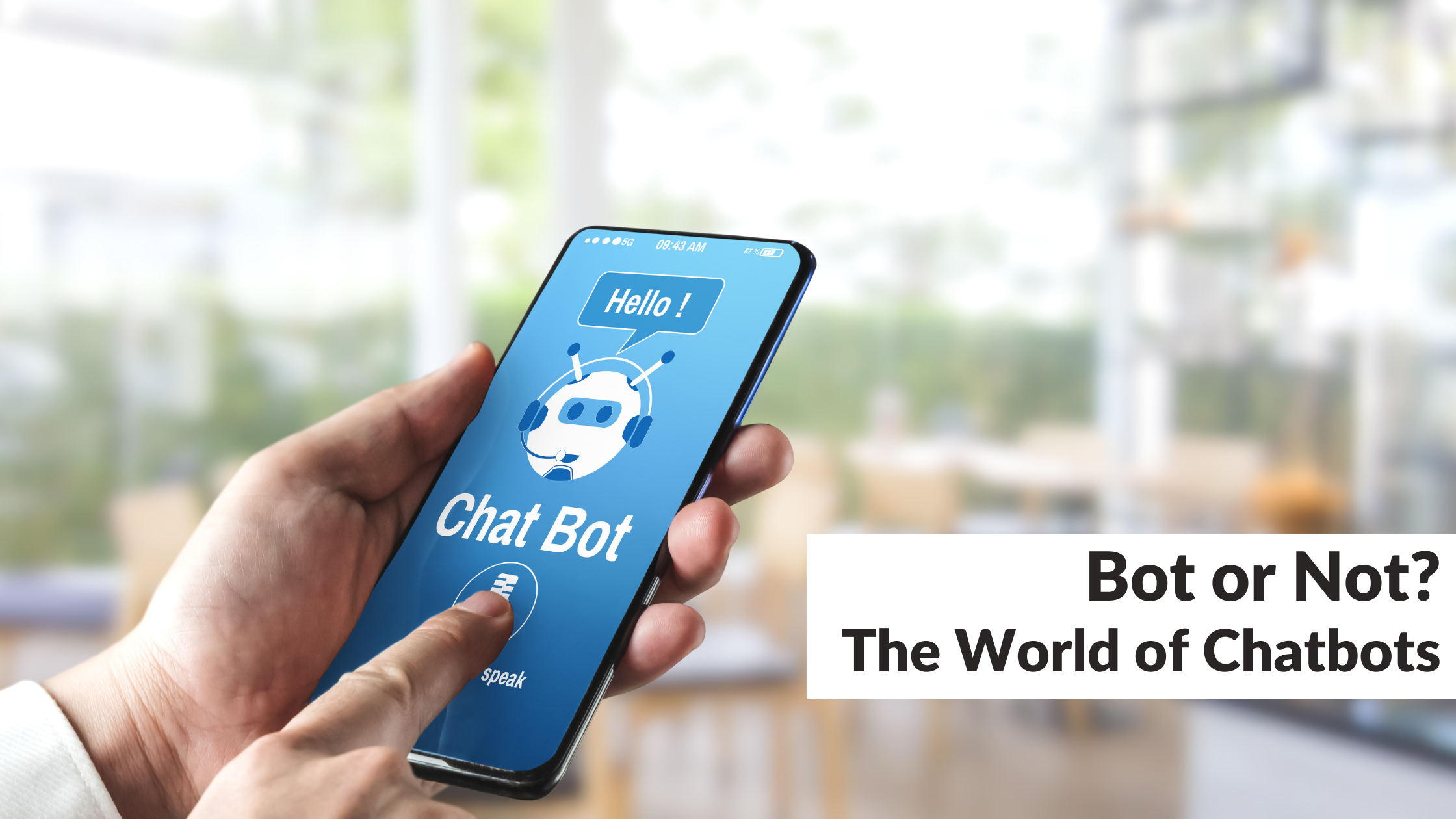 Bot or Not? The World of Chatbots