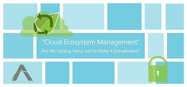Cloud Ecosystem Management
